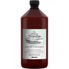Davines NATURALTECH Detoxifying Scrub Shampoo - Детоксирующий шампунь-скраб 1000мл